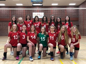 Volleyball Wales Team Photo